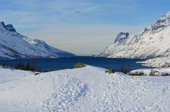Montagna nevosa alta maestosa con cielo blu ed il fiordo vibranti Fotografie Stock Libere da Diritti
