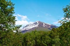 Montagna in Norvegia Immagine Stock