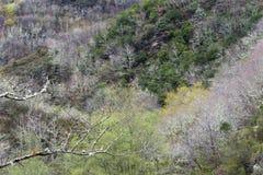 Montagna O Courel a Lugo, Galizia Spagna Immagini Stock