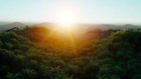 Montagna, paesaggio del campo con i dinosauri Paesaggio tropicale Siluetta dell'uomo Cowering di affari giungla Animazione realis royalty illustrazione gratis