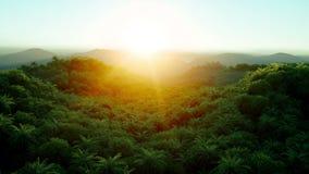 Montagna, paesaggio del campo con le palme giungla Animazione realistica 4K Siluetta dell'uomo Cowering di affari illustrazione di stock