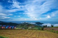 Montagna, paesino di montagna, rapa dell'azienda agricola del parco Fotografia Stock