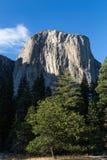 Montagna in parco nazionale di Yosemite, Stati Uniti di EL Capitan Fotografie Stock Libere da Diritti