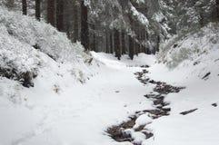 Montagna, percorso pietroso coperto di neve Fotografia Stock Libera da Diritti