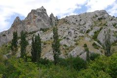 Montagna pietrosa con gli alberi di cipresso e della foresta nella priorità alta Immagine Stock Libera da Diritti