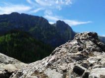 Montagna in Polonia Fotografia Stock