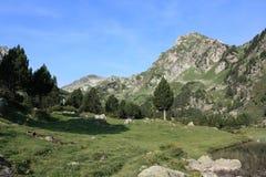 Montagna in Pyrenees Fotografia Stock Libera da Diritti