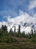 Montagna ricoperta neve con gli alberi in priorità alta Fotografia Stock Libera da Diritti