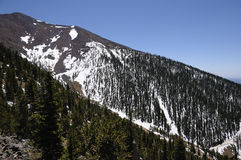 Montagna ricoperta neve - picco di Humphreys Fotografie Stock