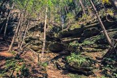 Montagna rocciosa alta Immagine Stock