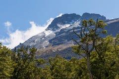 Montagna rocciosa con la foresta al forground Fotografia Stock