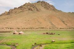 Montagna rocciosa e valle verde in Asia centrale con gli agricoltori della famiglia e le mucche di pascolo Fotografia Stock Libera da Diritti