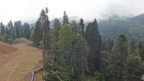 Montagna Rosa Khutor di estate fotografia stock libera da diritti