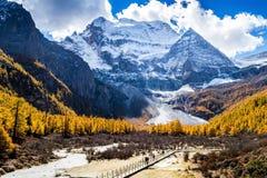Montagna santa di Xiannairi Immagini Stock
