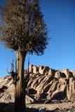 Montagna Sinai fotografie stock libere da diritti