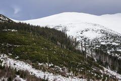 Montagna in Slovacchia, alto Tatras Fotografia Stock