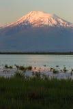 Montagna Snowcapped dell'Ararat con il lago blu nella parte anteriore Immagini Stock