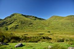 Montagna in Snowdonia Fotografia Stock Libera da Diritti