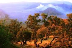 Montagna Soerabaya di Bromo Fotografia Stock Libera da Diritti