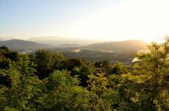 Montagna soleggiata boscosa con gli alberi in una vista del paesaggio Immagine Stock