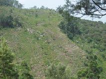 montagna in Sri Lanka Immagini Stock Libere da Diritti