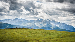 Montagna stante latente in Austria Immagini Stock