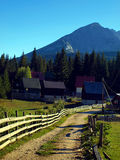 Montagna, strada rurale Fotografie Stock Libere da Diritti