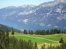 Montagna svizzera delle alpi e paesaggio del lago Immagini Stock Libere da Diritti