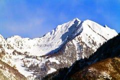 Montagna in Valtellina Fotografia Stock