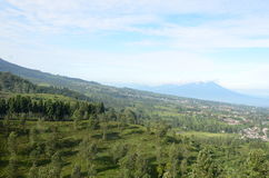 Montagna verde Immagine Stock