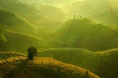 Montagna verde Immagini Stock Libere da Diritti