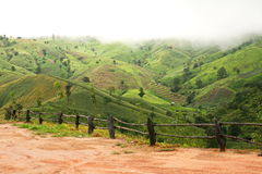 Montagna verde Fotografie Stock