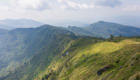 Montagna verde del paesaggio con il cielo e la nuvola del prato al 'chi' Fa Forest Park Thailand Wide di Phu fotografia stock