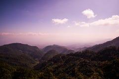 Montagna verde della foresta e luce soleggiata Fotografie Stock Libere da Diritti