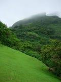 Montagna verde fredda Fotografie Stock