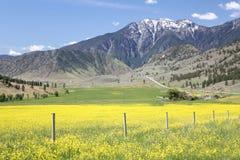 Montagna Wa di Chopaka. e passaggio di Okanagan BC. Immagine Stock