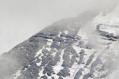 Montagna zumata delle alpi coperta di caduta fresca della neve, caduta della neve Fotografia Stock