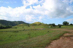 Montagnards d'herbe de Ranong Image libre de droits