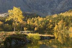Montagne à l'automne Images libres de droits