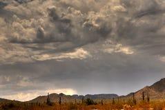 Montagne 104 de désert Image libre de droits