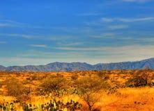 Montagne 104 de désert Photos libres de droits