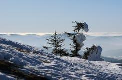 Montagne all'inverno Fotografia Stock Libera da Diritti