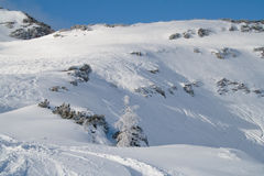 Montagne alpestre Images stock