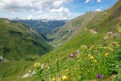 Montagne alpine di estate Immagini Stock