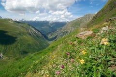 Montagne alpine di estate Immagine Stock