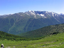 Montagne Altai Fotografia Stock