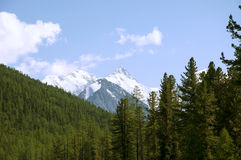 Montagne Altai, Belukha Photographie stock