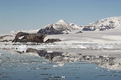 Montagne antartiche Immagini Stock