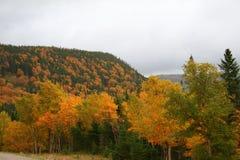 Montagne in autunno fotografie stock libere da diritti