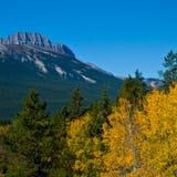 Montagne avec la couleur d'automne image libre de droits